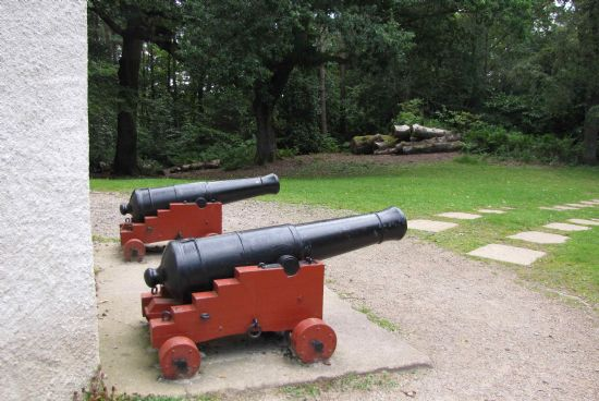 Cannons at Nelson's Tower